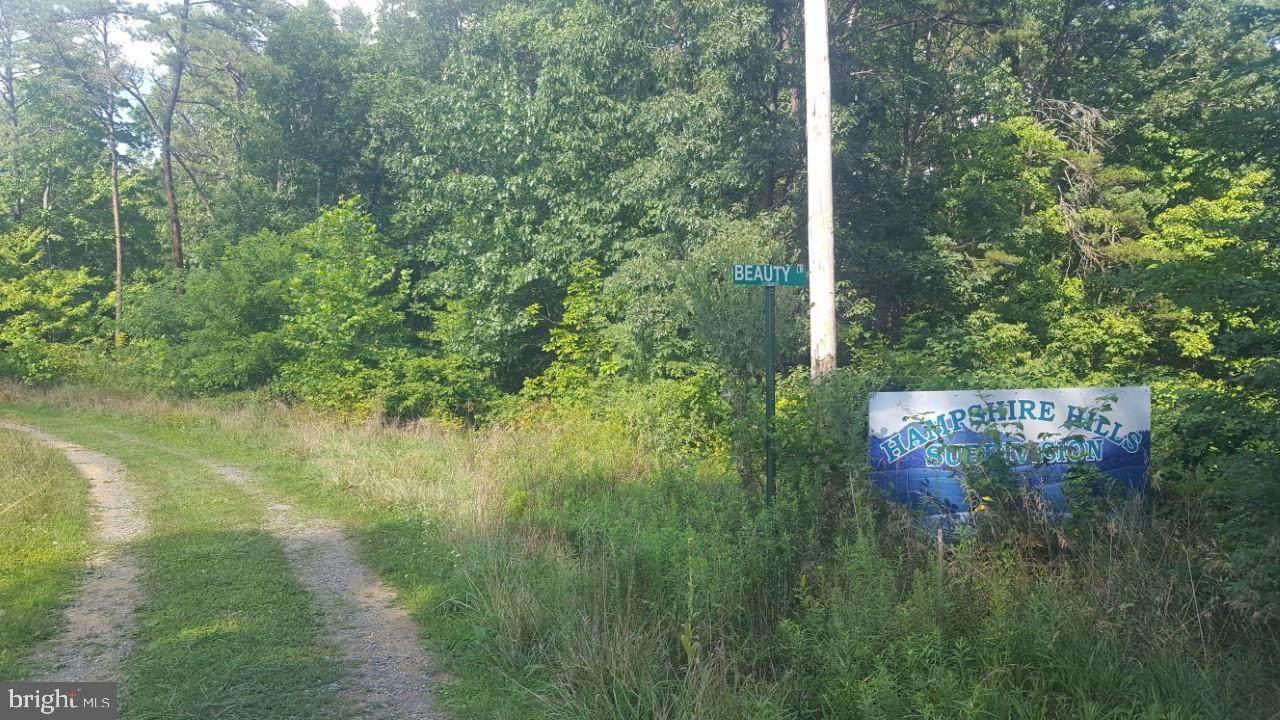Mccauley Drive/Wills Way Lane - Photo 1