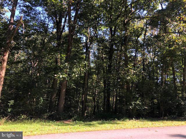 Laurel Ridge Road - Photo 1