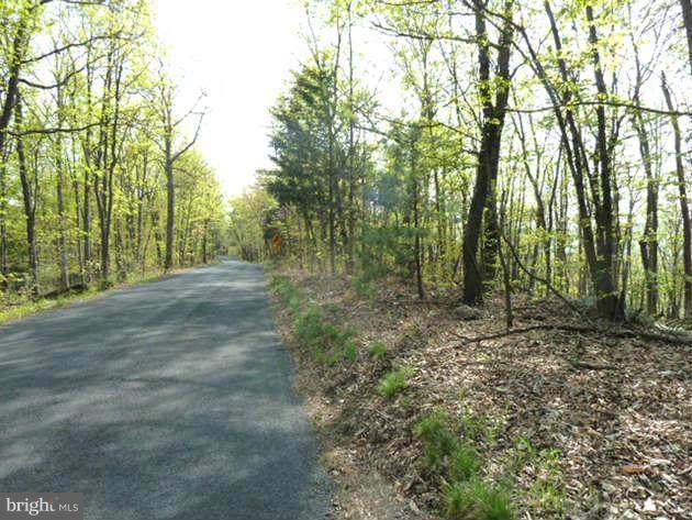 0 Supinlick Ridge Road, MOUNT JACKSON, VA 22842 (#VASH120148) :: AJ Team Realty