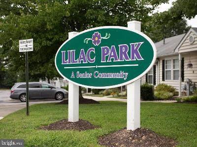 9117 Lilac Park Drive - Photo 1