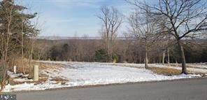 Phoebe Lane, BERKELEY SPRINGS, WV 25411 (#WVMO117436) :: Jennifer Mack Properties