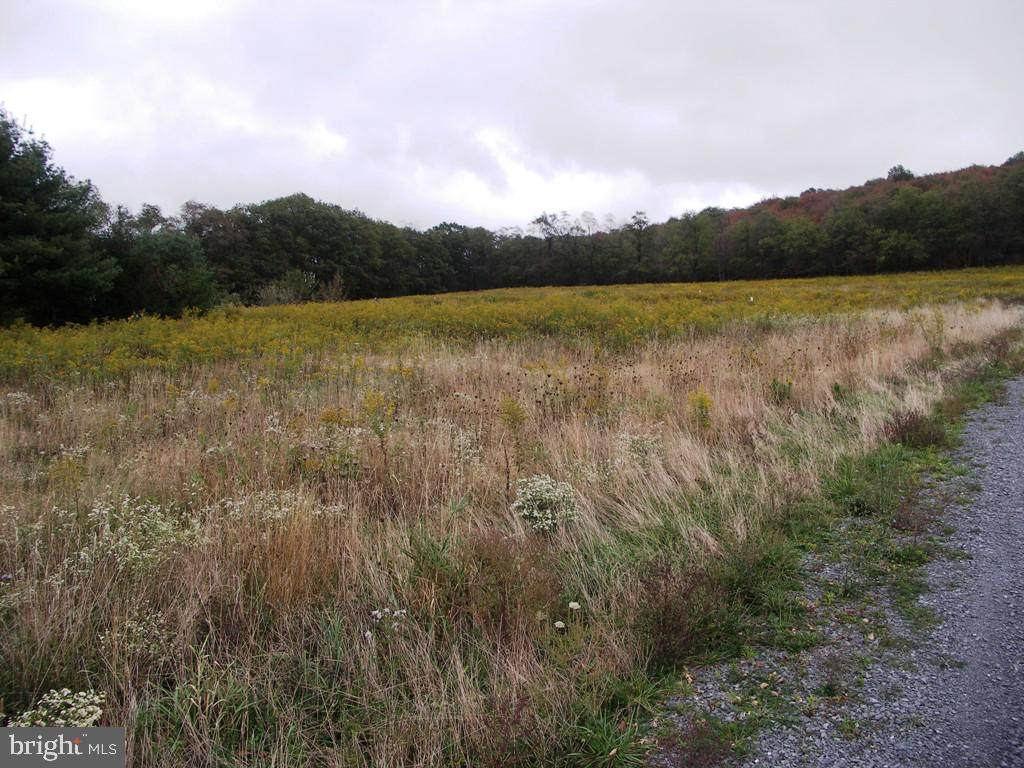 Garrett Trail - Photo 1