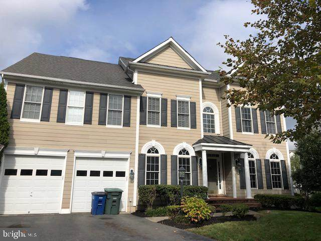 19525 Mill Dam Place, LEESBURG, VA 20176 (#VALO422396) :: Jim Bass Group of Real Estate Teams, LLC
