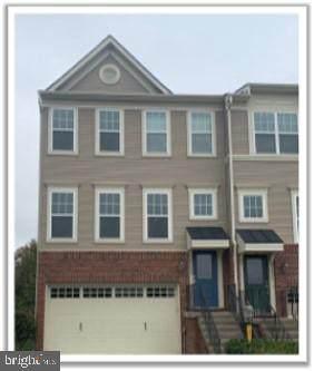 43404 Hopestone Terrace, CHANTILLY, VA 20152 (#VALO422402) :: Debbie Dogrul Associates - Long and Foster Real Estate