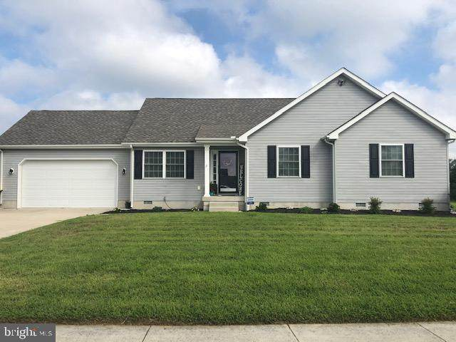 172 Abigail Lane, MAGNOLIA, DE 19962 (#DEKT242286) :: Linda Dale Real Estate Experts