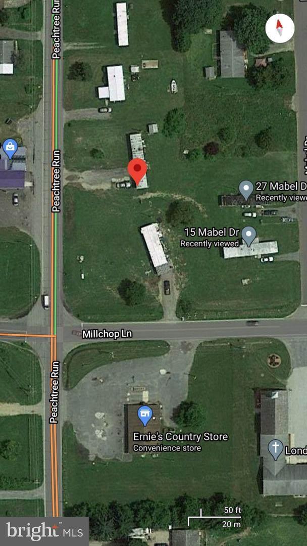 539 Millchop Lane, MAGNOLIA, DE 19962 (#DEKT242324) :: Brandon Brittingham's Team
