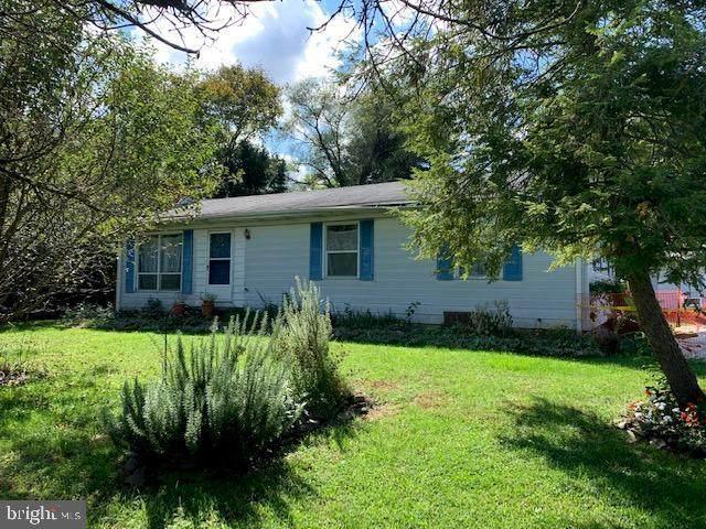 10546 Worton Road, WORTON, MD 21678 (#MDKE117172) :: Bright Home Group