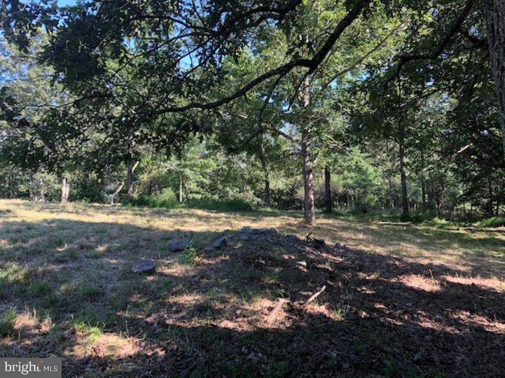 TBD Branch Mountain Lane - Photo 1