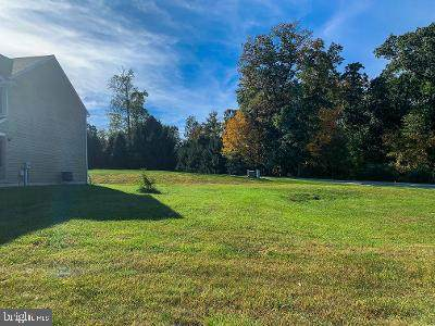 220 (LOT 47) Sunbury Way, RED LION, PA 17356 (#PAYK147300) :: Liz Hamberger Real Estate Team of KW Keystone Realty