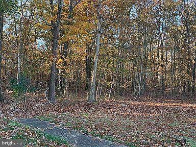 White Cedar Lane, WILLIAMSTOWN, NJ 08094 (#NJGL266258) :: LoCoMusings