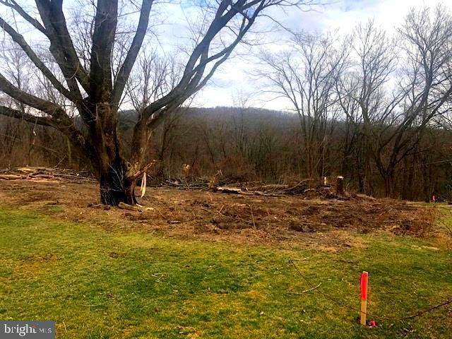 LOT 20 Stephen St., MILLERSTOWN, PA 17062 (#PAPY102764) :: The Joy Daniels Real Estate Group