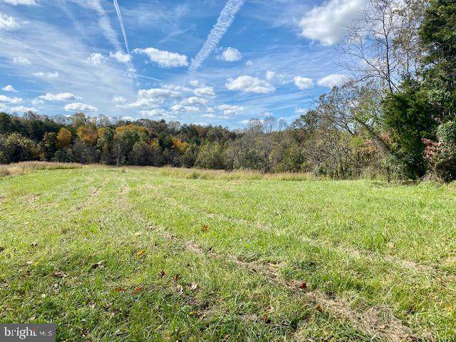 Lot 14 Mountain Ridge Way, CULPEPER, VA 22701 (#VACU142842) :: The Piano Home Group