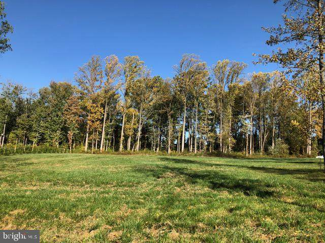 17120 Troyer Road, MONKTON, MD 21111 (#MDBC510130) :: Revol Real Estate