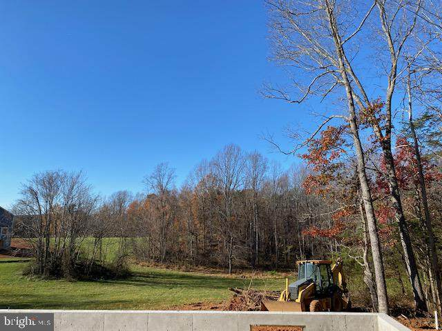 12476 Stonehouse Mountain Road, CULPEPER, VA 22701 (#VACU142860) :: The Sky Group