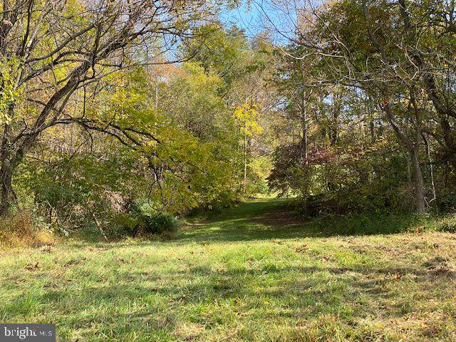 Lot B4 Mountain Ridge Way, CULPEPER, VA 22701 (#VACU142872) :: LoCoMusings