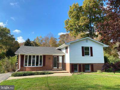 1326 Hillcrest Drive, SYKESVILLE, MD 21784 (#MDCR200578) :: The Redux Group