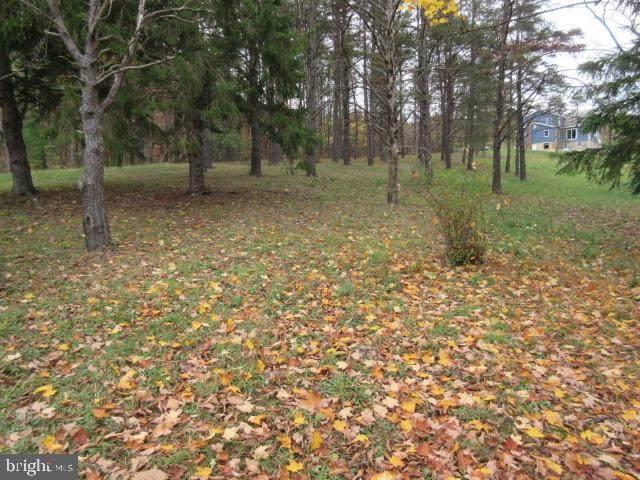 13816 Redstone Ridge Road, JAMES CREEK, PA 16657 (#PAHU101740) :: The Joy Daniels Real Estate Group