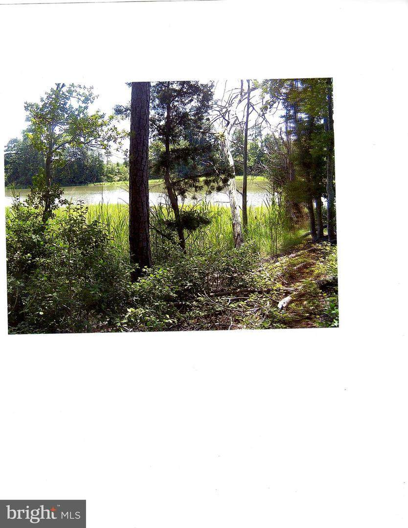 00 Hussey's Creek Road Road - Photo 1