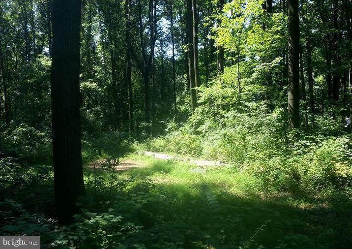 3585 Kegerise Drive - Photo 1