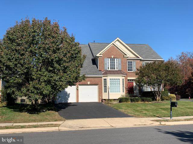 42056 Bear Tooth Drive, ALDIE, VA 20105 (#VALO425466) :: The Redux Group