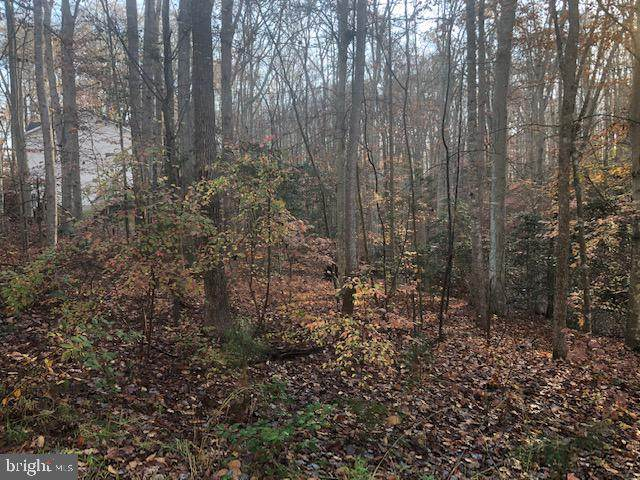 Lot 12 Hoover Drive, KING GEORGE, VA 22485 (#VAKG120510) :: Realty One Group Performance