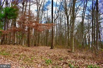 0 Rabbit Run & Orchard View - Photo 1