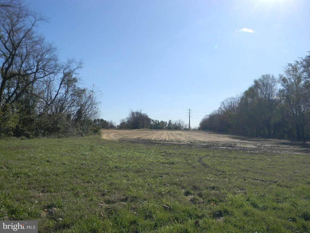 0 Brewster Road - Photo 1