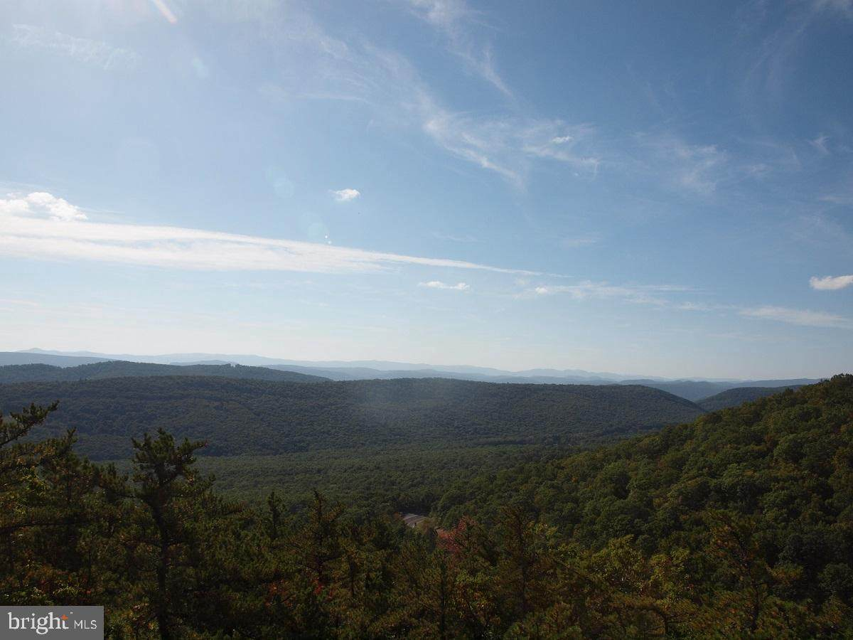 7613 Mountaineer Drive - Photo 1