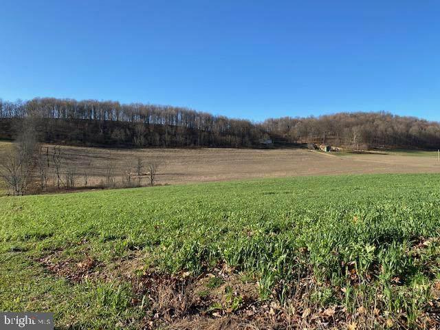 4963 Evitts Creek Road, BEDFORD, PA 15522 (#PABD102606) :: LoCoMusings