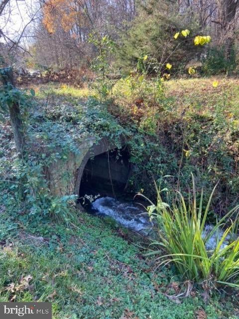 18160 Buzzard Hollow Road, GORDONSVILLE, VA 22942 (#VAOR138022) :: The Licata Group/Keller Williams Realty