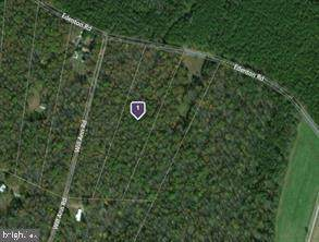 10130 Edenton Road, PARTLOW, VA 22534 (#VASP227200) :: ROSS | RESIDENTIAL
