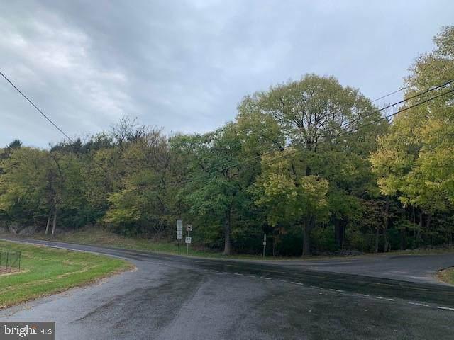 Oak Flat Road, NEWVILLE, PA 17241 (#PACB130506) :: The Joy Daniels Real Estate Group