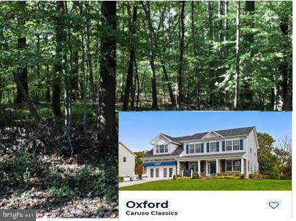 3706 Mayo Road Lot 3, EDGEWATER, MD 21037 (#MDAA455312) :: Bob Lucido Team of Keller Williams Integrity
