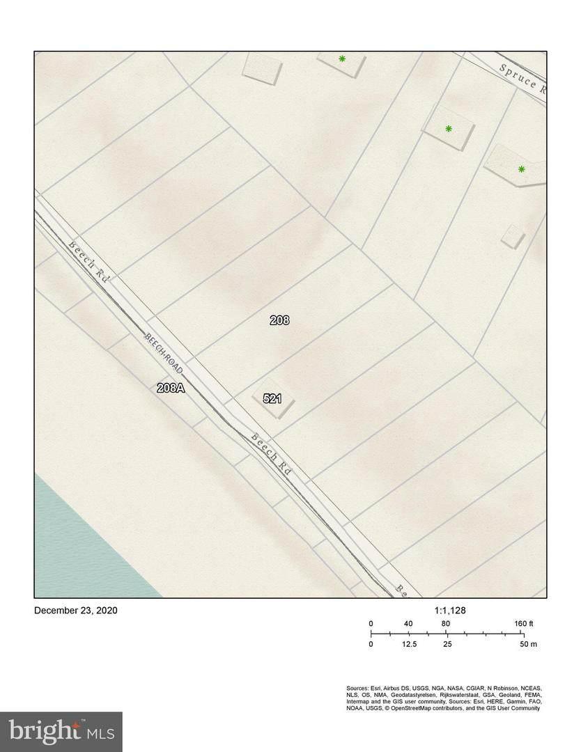Lot 208 & Lot 208A Beech Road - Photo 1