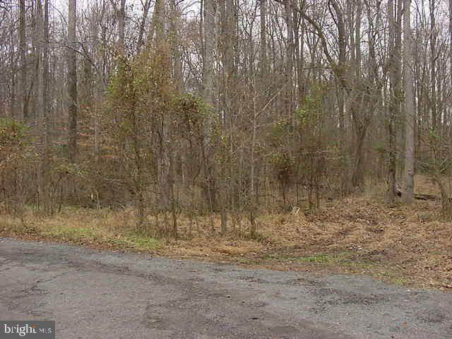 LOT 76 French Road, LORTON, VA 22079 (#VAFX1174794) :: Revol Real Estate