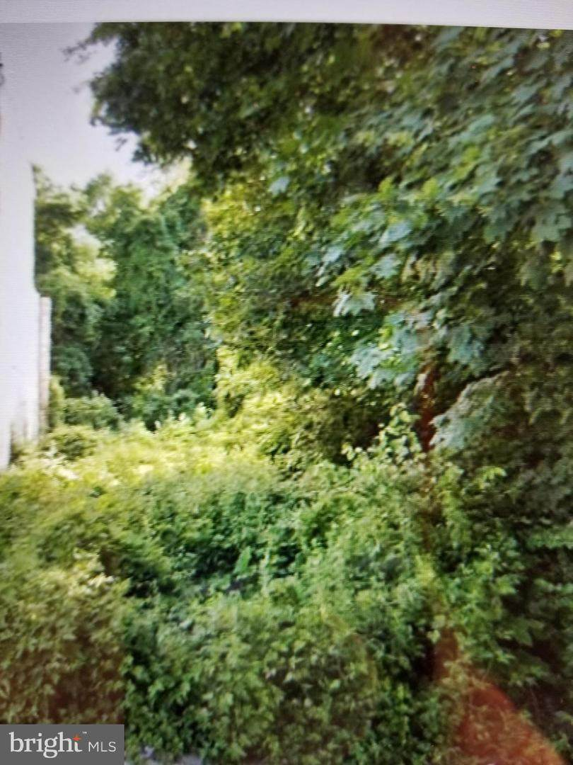 4952 Rubicam Street - Photo 1