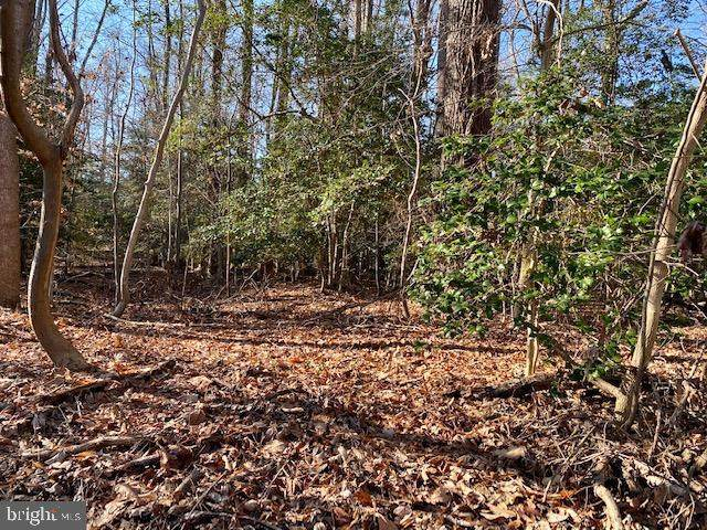 LOT# 156 North Independence Drive - Photo 1