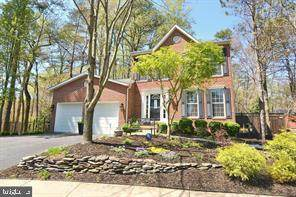 203 Misty View Court, PASADENA, MD 21122 (#MDAA456302) :: Keller Williams Flagship of Maryland