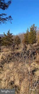 11070 Mountaineer Drive - Photo 13