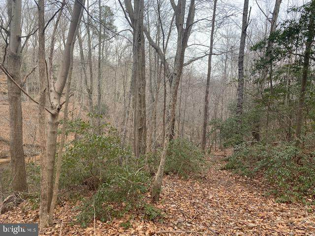 LOT #60, 61 AND 62 Federalist Way, MONTROSS, VA 22520 (#VAWE117700) :: Erik Hoferer & Associates