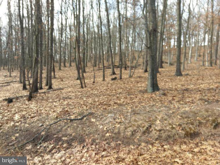 Lot 6 Scenic View Lane - Photo 1