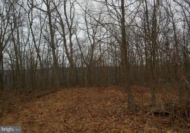 Mountain Top Road Lot 49, BLOOMERY, WV 26817 (#WVHS115200) :: SP Home Team