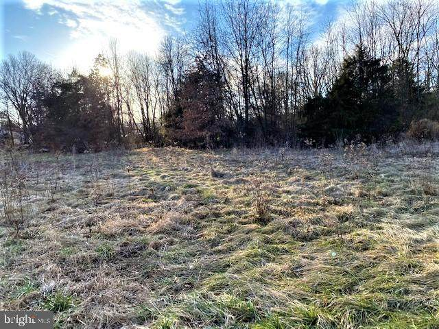 Lot B Summerfield Drive, WARDENSVILLE, WV 26851 (#WVHD106554) :: Integrity Home Team