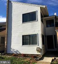 13347 Feldman Place, HERNDON, VA 20170 (#VAFX1176884) :: Pearson Smith Realty