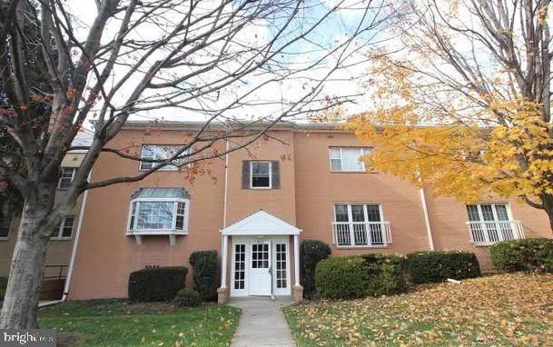 2916 Peyton Randolph Drive #158, FALLS CHURCH, VA 22044 (#VAFX1177912) :: Bic DeCaro & Associates