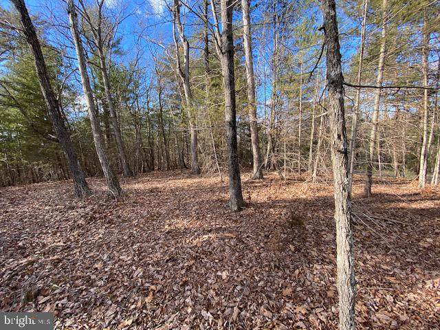 Lot 17 Slate Rock Pass Road, WARDENSVILLE, WV 26851 (#WVHD106618) :: The Mike Coleman Team