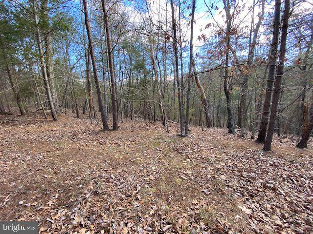 Lot 18 Slate Rock Pass Road, WARDENSVILLE, WV 26851 (#WVHD106620) :: The Mike Coleman Team