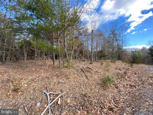 Lot 20 Slate Rock Pass Road, WARDENSVILLE, WV 26851 (#WVHD106624) :: The Mike Coleman Team
