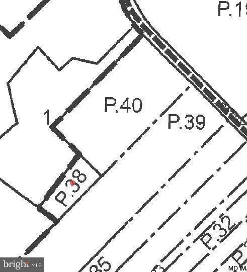 0 Patey Woods Road, NEWARK, MD 21841 (#MDWO119976) :: AJ Team Realty