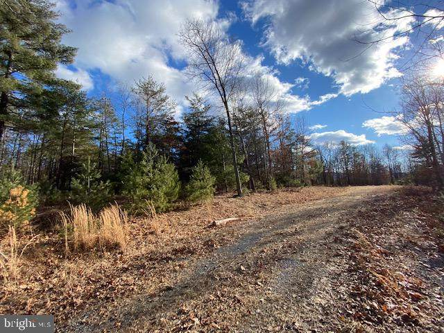 Lot 21 Slate Rock Pass Road, WARDENSVILLE, WV 26851 (#WVHD106626) :: The Mike Coleman Team